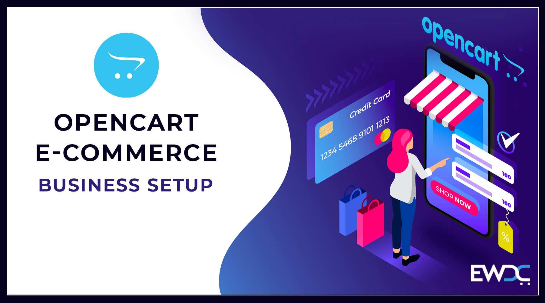 e-commerce business setup-2